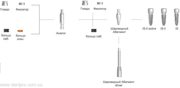 Аналог шаровидный BALA350 NeoBiotech - 1
