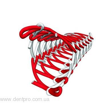 Ультрапак (Ultrapak) ретракционная вязанная нить без пропитки, колба с лезвием, длина 244 см - 1